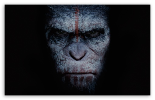 Nerdlocker Film Review: Dawn of the Planet of the Apes