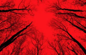 Nerdlocker Movie Review: Blair Witch